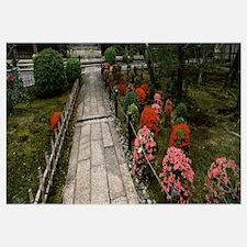 Flowers in a garden, Seiryoji Temple, Arashiyama,