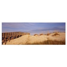 Boardwalk over sand dunes leading towards a beach, Poster