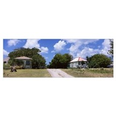 Houses in a field, Anguilla, British Overseas Terr Poster