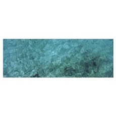 Water surface of the sea, Anguilla Poster