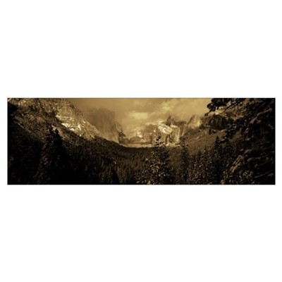 Trees in a valley, Yosemite Valley, Yosemite Natio Poster