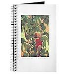 Smith's Jack & Beanstalk Journal
