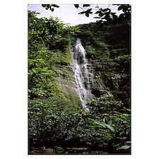 Waterfall in a forest, Waimoku Falls, Haleakala Na