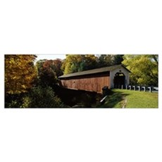 Covered bridge in a forest, McGees Mill Covered Br Poster