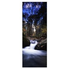 River flowing through a forest Delaware Water Gap Canvas Art