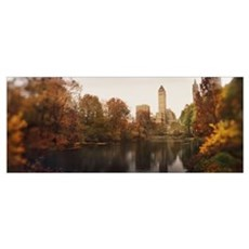 Park with buildings in the background Central Park Canvas Art