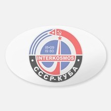 Interkosmos Decal