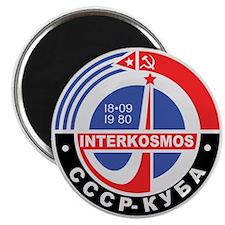 Interkosmos Magnet
