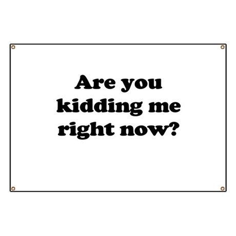 Are you kidding me right now? Banner by seriouslycool