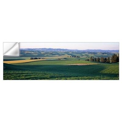 Croplands Whitman County WA Wall Decal
