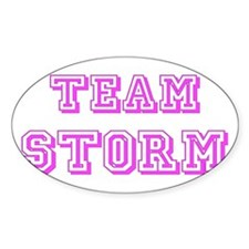 Team Storm Pink Decal