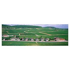 Rural Scene with Houses Beaune Bourgogne France Poster