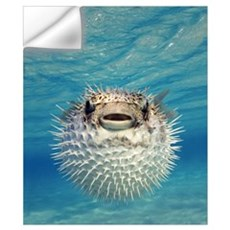 Puffer Fish Bahamas Wall Decal