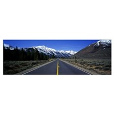 California, Twin Lakes, road Framed Print