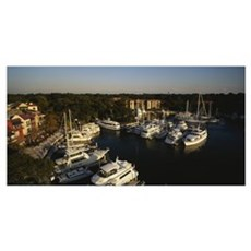 High angle view of yachts moored at a harbor, Hilt Poster