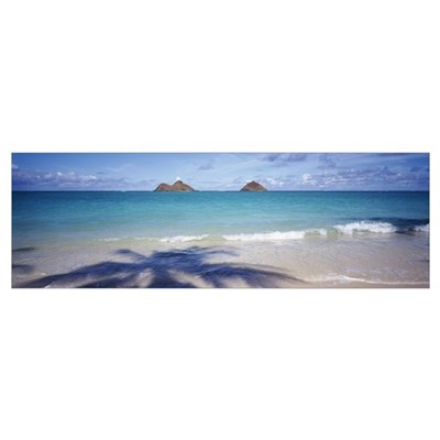 Shadow of a tree on the beach, Lanikai Beach, Oahu Framed Print