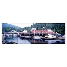 Telegraph Cove Vancouver Island British Columbia C Poster
