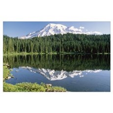 Mt Rainier reflected in lake Mt Rainier National P Poster