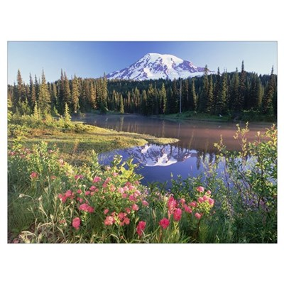 Mt Rainier and wildflowers at Reflection lake Mt R Poster