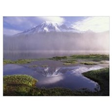 Mt Rainier an active volcano encased in snow Mt Ra Poster