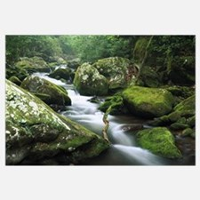 Roaring fork river Great Smoky Mountains National