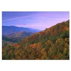 Appalachian Mountains ablaze with fall color Great Poster