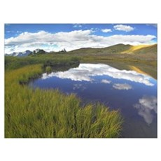 Clouds reflected in water at Cottonwood Pass Rocky Poster