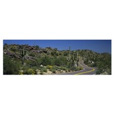 Road Phoenix AZ Canvas Art