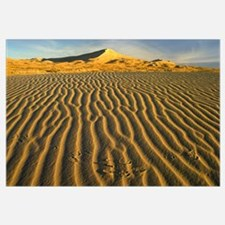 Wind ripples in Kelso Dunes, Mojave National Prese