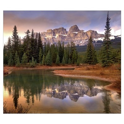 Castle Mountain and boreal forest reflected in lak Framed Print