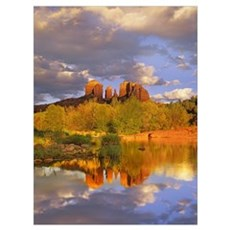 Cathedral Rock reflected in Oak Creek at Red Rock  Poster