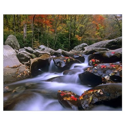 Little Pigeon River, Great Smoky Mountains Nationa Poster