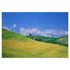 Rural Scene Hokkaido Japan