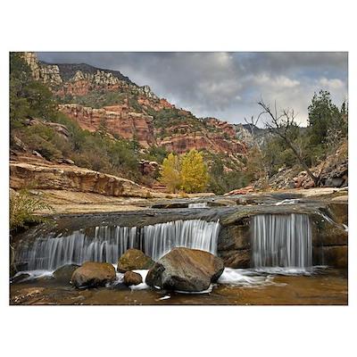 Oak Creek in Slide Rock State Park near Sedona, Ar Poster