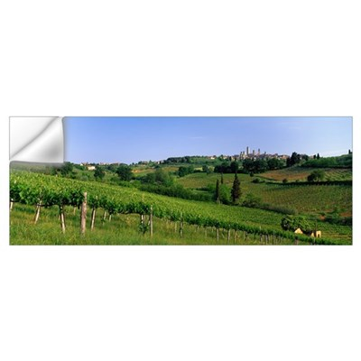 Vineyards and Medieval Town of San Gimignano Tusca Wall Decal