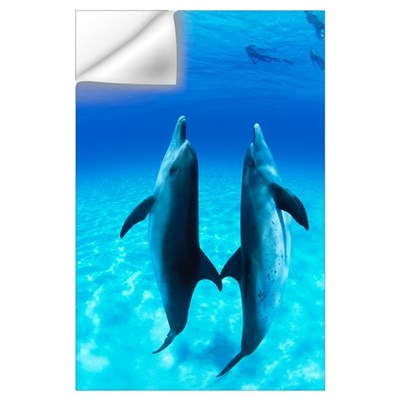 Atlantic Spotted Dolphin (Stenella frontalis) pair Wall Decal