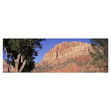 Johnson Mts Early Evening Zion Canyon Nat'l Pk UT Poster