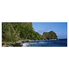 Palm trees on the coast, Marquesas Islands, Tahiti Poster