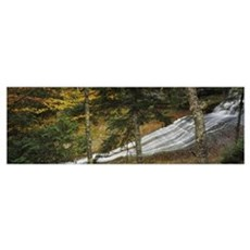 Waterfall in the forest, Laughing Whitefish Falls, Canvas Art