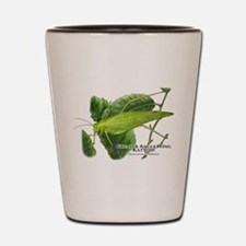 Greater Angle Wing Katydid Shot Glass