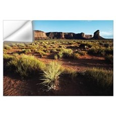 Desert Landscape Of Monument Valley Wall Decal