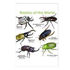 Beetles of the World Postcards (Package of 8)