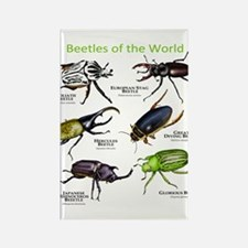 Beetles of the World Rectangle Magnet