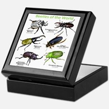Beetles of the World Keepsake Box