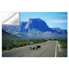 Javelina Animals Crossing Road Wall Decal