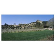 Plants in a field near a town, Ansouis, Luberon, F Poster