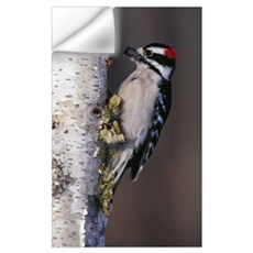 Downy woodpecker on tree trunk, Michigan Wall Decal