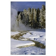 Hot springs in snow, frosted pine tree forest, Yel Poster