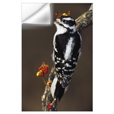 Downy woodpecker on tree branch with berries, Mich Wall Decal