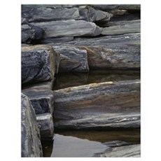 Rocks in tidal pools, close up, Pemaquid Point, Ma Poster